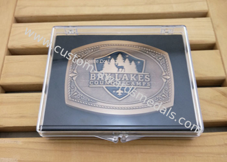 China Brass Die Struck Customized Antique Gold Metal Buckle / Fashionable Belt Buckles For Men supplier